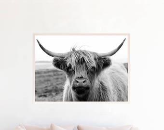 Highland Cow Printable, Highland Cow Digital Download hc5bwl2