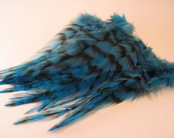 5 to 6 Inch Grizzly Rooster Saddle Hackle Dyed Blue