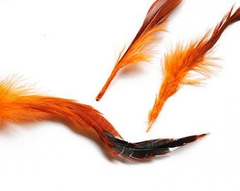 "Dyed Orange Saddle Badger Rooster Feathers 6-8"" | 10 pcs."