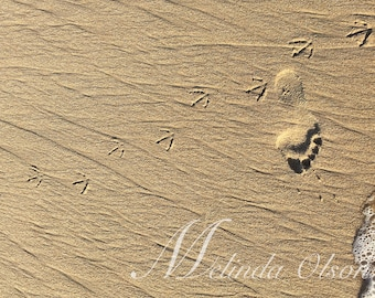 Footprints, Photography Print, Huntington Beach, Beach Print, California Print, Sand Art, Eco Friendly Picture 4x6 , 5x7 , 8x10 , 16x20