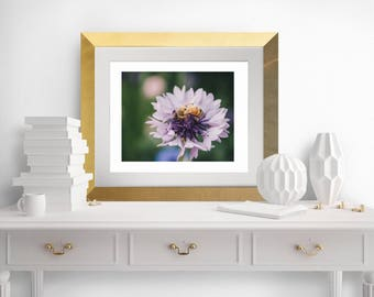 Bee In The Spring Print, Instant Download Digital Photograph, 8x10 Photograph, Modern Art and Photography, Spring Wall Art
