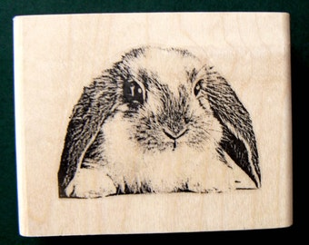 Bunny Lop rubber stamp WM deep etched P22
