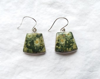 Rainforest Jasper Earrings