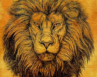 Lion Watercolor King of the Jungle