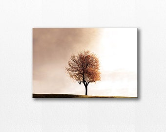 autumn trees photography canvas wall art 12x18 24x36 fine art photography canvas wall art autumn canvas print large beige gallery wrap fall