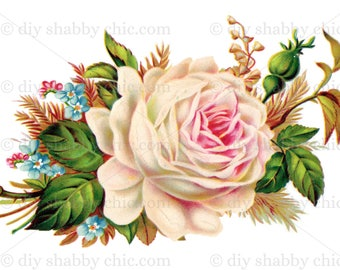 Furniture Decal Shabby Chic French Image Transfer Vintage Dusky Pink Flower  Rose Label Recycle Upcycling Art Crafts Scrapbooking Card Making