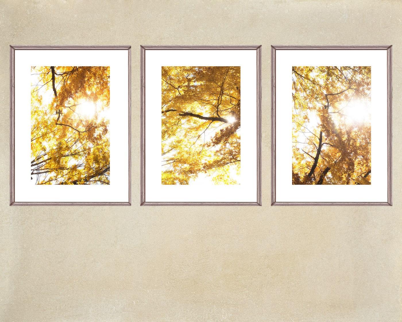 Autumn Tree Prints Abstract Photography Three Print Set
