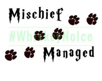 Dog Mischief Managed