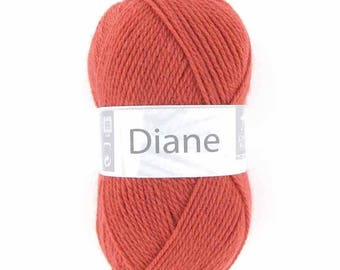 Wool DIANE colors Carmine n ° 020 white horse