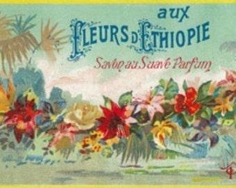 Fleurs D Ethiopie Soap Label (Art Prints available in multiple sizes)