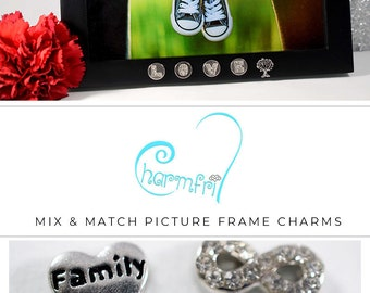 Family Charms Baby Shower Gift, Family Picture Frame Gift, Family Gift for Baby Shower, Frame Gift for Baby Girl, Baby Boy Shower Gift
