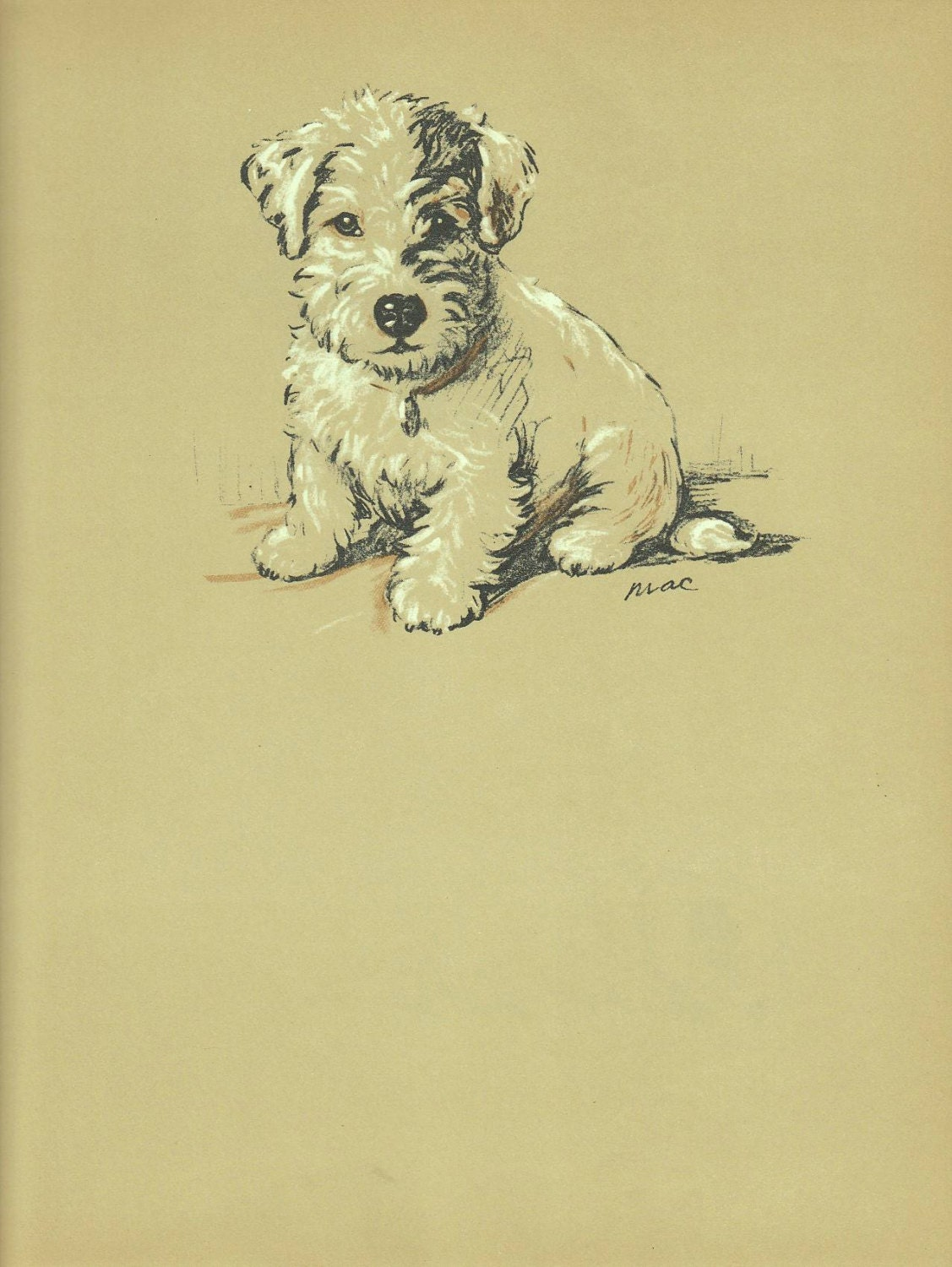 PUPPY Print Dog PRint Terrier Pet print Lucy Dawson 1930s