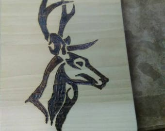 Euro deer