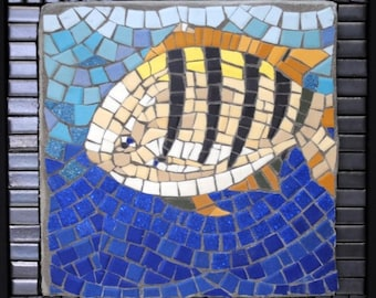 Sergeant Major Mosaic Art Wall Piece by Brenda Pokorny Inspired by Snorkeling Adventures in the Caribbean Sea