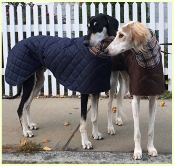 Greyhound waterproof winter fleece lined coats