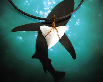 Shark Tooth Necklace, Modern Day Bull Shark tooth, Copper wire wrap, Leather cord