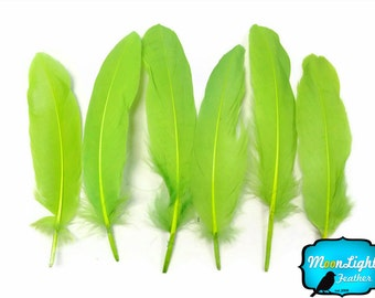 Green Feathers, 1 Pack - Lime Green Goose Satinettes loose feathers 0.3 oz. : 155