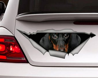Dachshund  decal,  dog car decal, Vinyl decal, car decoration, Dachshund  sticker, pet decal