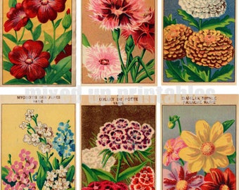 Mixed Up Printables - Flower Seed Packets Ephemera #2
