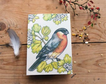 Recycled notepad with Bullfinch bird design