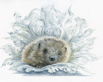 Medieval Hedgehog print - from an original colour pencil drawing by D Y Hide, signed by the artist, also available as a greetings card