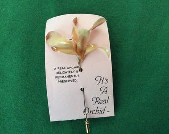 Orchid stick pin