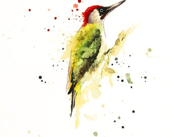 Green Woodpecker original watercolor painting, Color bird, Bobapainting