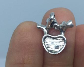 2 Anatomical Human Lumbar Vertebrae Charms Antique Silver 18mm - ANA18