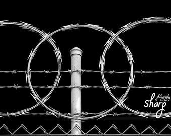 Razor Wire Fence against Black Sky
