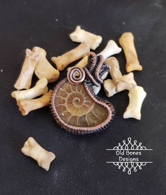 Ammonite Wire Wrapped Pendant, Wire Wrapped Ammonite Fossil Necklace, Fossil Pendant