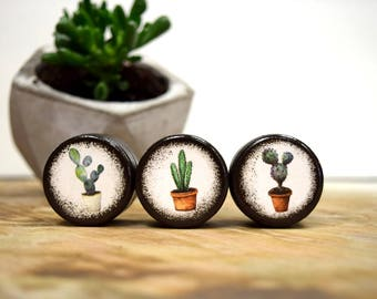 Succulent Pill Boxes - Set of Three,  pill box, Jewelry Box, Trinket Boxes, Wood Box, Wooden box, Prickled Pots, Cactus, Trendy, Bohemian