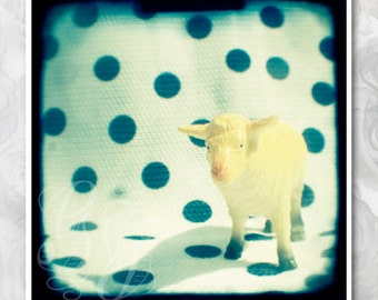 TTV photograph 'Look at ewe' square print of white toy sheep. Animal wall art, home decor, nursery print, still life photo