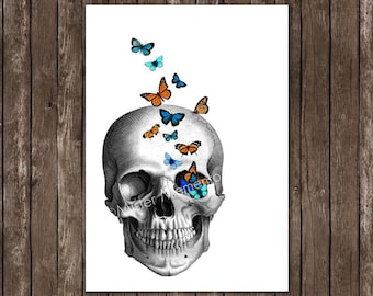 skull art - skull with butterflies - giclee art print - skull art print - anatomy art