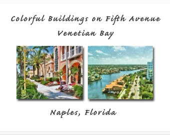 Naples, Florida Grouping