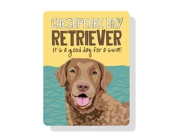 "Chesapeake Bay Retriever - It's a good day for a swim! 9"" X 12"" aluminum sign"