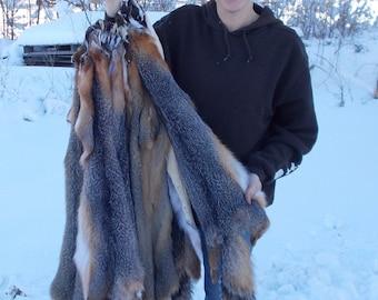 Professionally-Tanned-Grey-Fox-Pelt-fur-grayfx39+