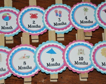 Beach Photo Clips. Beach. Photo Clips.Picture Banner. Set of 13. Newborn. 12 months. First Birthday. Pink. Blue