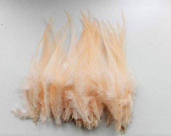 10 skin 10-15cm Rooster feathers