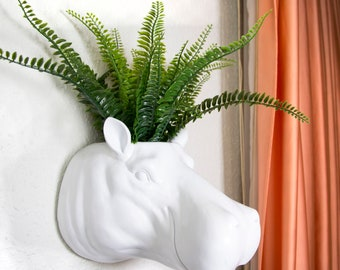 Hippo Plant Holder | Hippo Wall Mount | Succulent Planter | Faux Hippo Taxidermy | Cute Animal Planter | Hippo Head Wall Planter