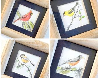 Set of 4 Framed Bird Watercolors, Four Original Watercolor and Ink Bird Drawings, Framed Original Art, Robin Cardinal Chickadee Goldfinch