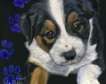 English Shepherd Puppy scratchart print -Rio