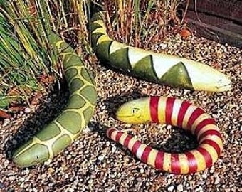 7 Snake Gourd Seeds-1171