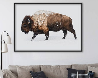 SALE! Bison Print, Buffalo Print, Animal Prints, Farmhouse Decor, Bison Wall Art, Bison Wall Decor, Boys Bedroom Decor, Large Wall Art Print