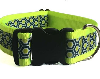 """1.5"""" Neon Honeycomb Dog Collar Buckle or Martingale"""