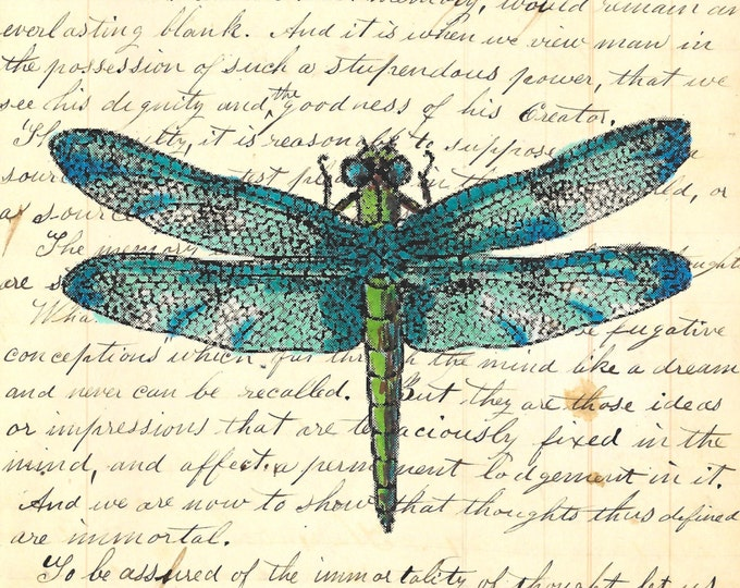 Vintage Blue dragonfly insect colorful image on print of antique ledger or journal paper vintage print wall hanging decoration gift VBD397