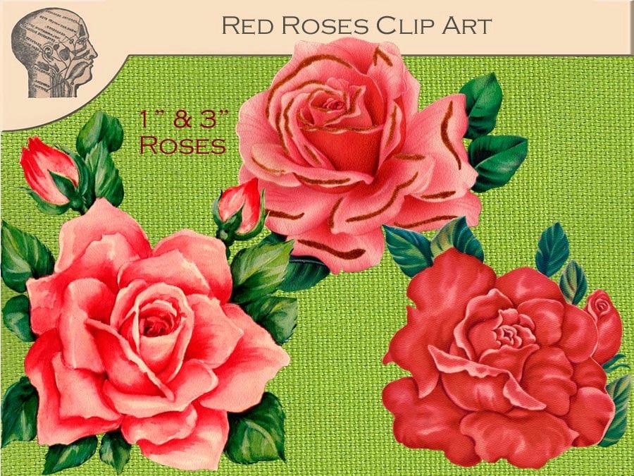 Excelente Rosa Etiquetas Del Uña Galería - Ideas Para Esmaltes ...