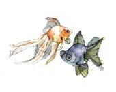 Watercolor Fish Print - P...