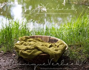 digital backdrop for newborn nature photography