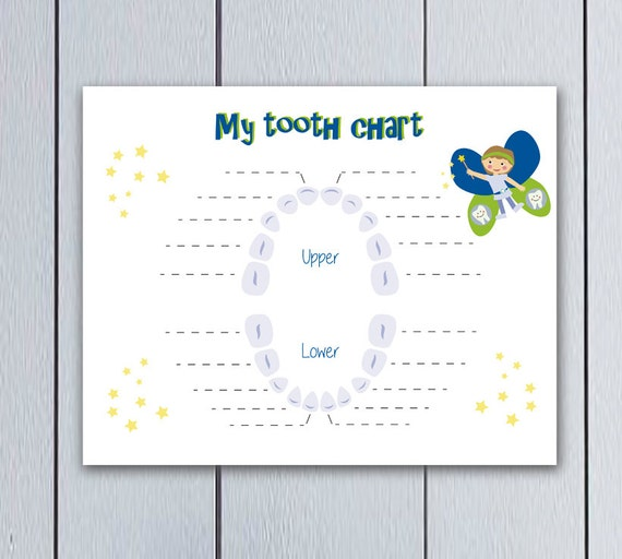 Tooth Fairy Tooth Chart For Kids