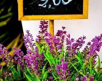 Lavande/Lavender-Rungis Market, Fine Art Photography,France,multiple sizes available-purple-flowers-floral-nature-up-close-unique-garden